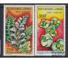 Congo - n°PA 8/9 - Fleurs de 1963 -Costus spectabilis - Acanthus montanus - 100f et 500f